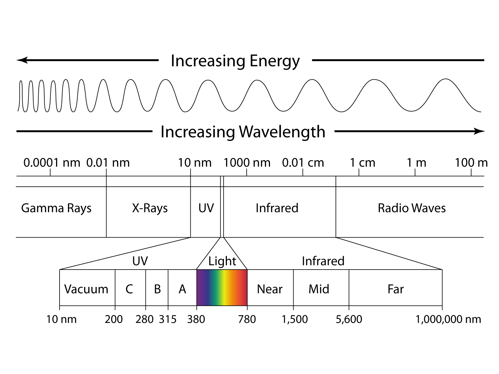 the em spectrum During this lesson, the electromagnetic spectrum is explained and students learn that visible light makes up only a portion of this wide spectrum students also learn that engineers use electromagnetic waves for many different applications.